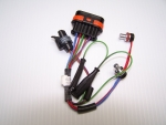 Overheat/Temperature Sensor w/Plug